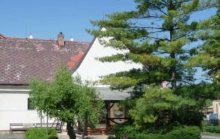 Chráněné bydlení - pohled ze zahrady
